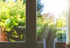 Sunshine beaming through window